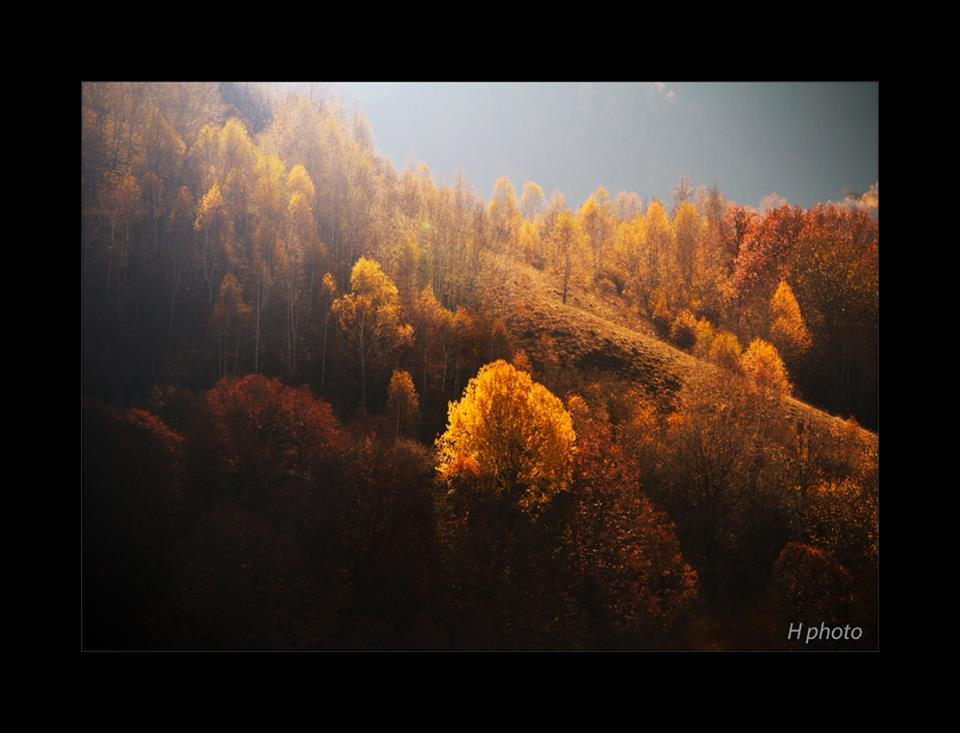 Autumn in Transylvania