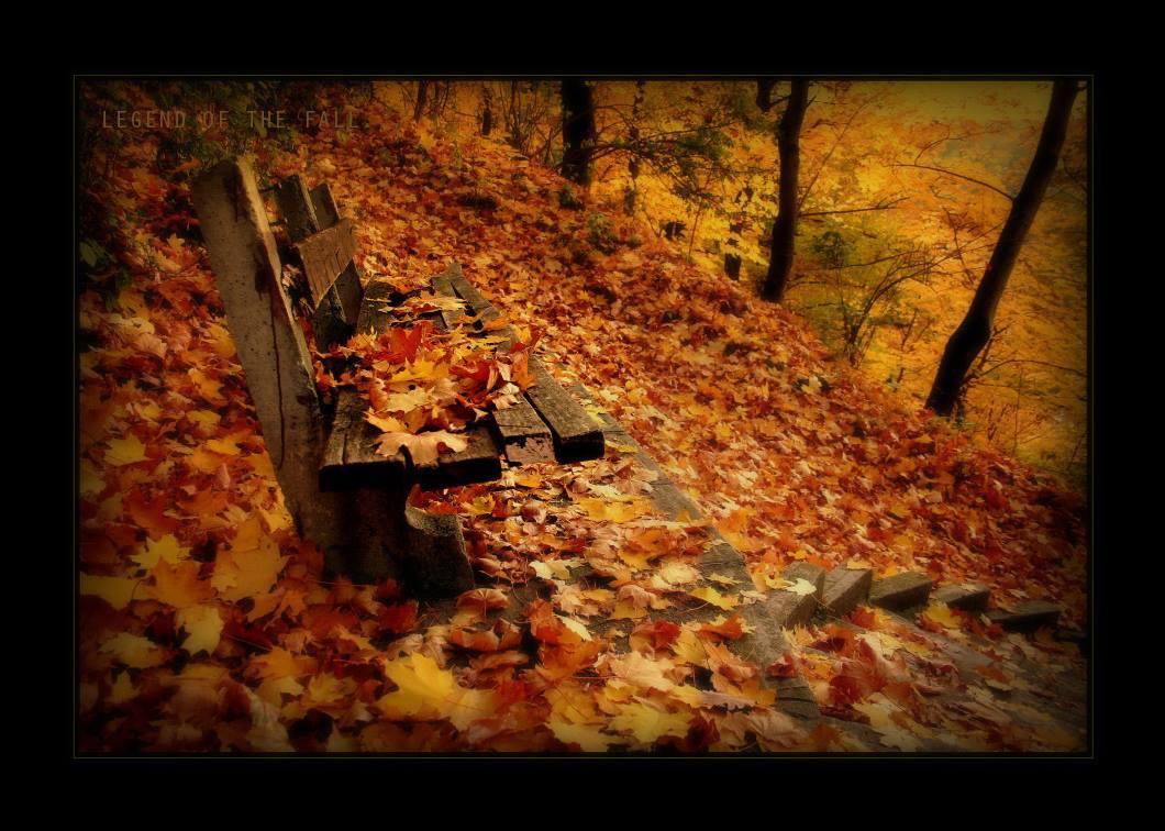 Transylvania dressed  in autumn