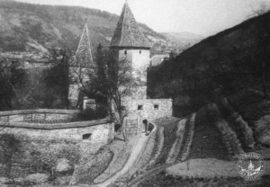 Turnul-Macelarilor - Butcher`s Tower Sighisoara