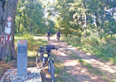 Cycling tour around Sighisoara 1