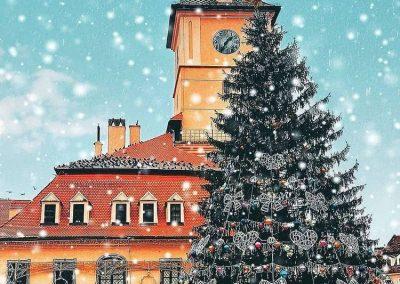Brasov Christmas Tree
